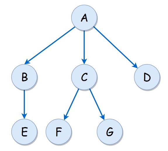 N-ary tree Theory of Programming